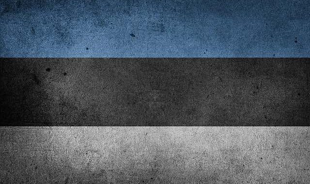 Looking to Go Into a Cryptocurrency Business? Go to Estonia!